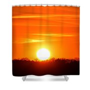 Trees And Sun Two  Shower Curtain