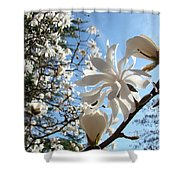 Trees Art Prints White Magnolia Flowers Baslee Troutman Shower Curtain