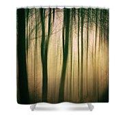 Trees At Dawn Shower Curtain