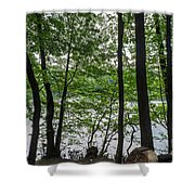 Trees At Lake Schlachtensee Shower Curtain