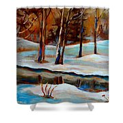 Trees At The Rivers Edge Shower Curtain