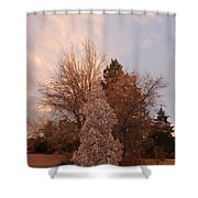 Trees At The State Capital Shower Curtain