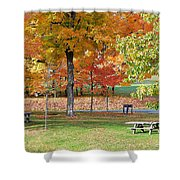 Trees Begins Autumn Color Shower Curtain