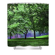 Trees By A Pond Shower Curtain