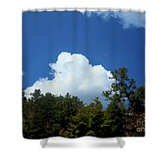 Trees, Clouds, And Sky Shower Curtain