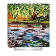 Trees Edge The Pond Shower Curtain