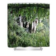 Trees Fallingwater  Shower Curtain