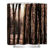 Trees Gathering Shower Curtain