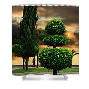 Trees In A Park Of Limassol City Sea Front In Cyprus Shower Curtain