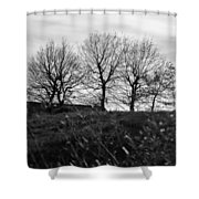 Trees In April Shower Curtain