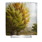 Trees In Boulder Shower Curtain