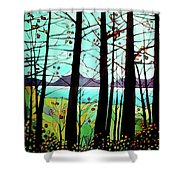 Trees In Fall Shower Curtain