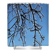 Trees In Ice Shower Curtain