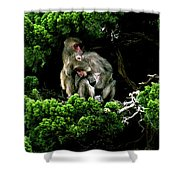 Trees In Japan 10 Shower Curtain
