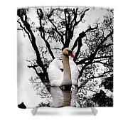 Trees In Japan 6 Shower Curtain