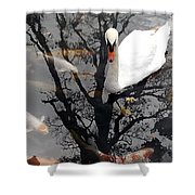 Trees In Japan 7 Shower Curtain