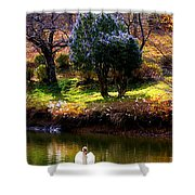Trees In Japan 8 Shower Curtain