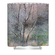Trees In Light Shower Curtain
