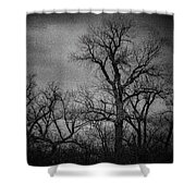 Trees In Storm In Black And White Shower Curtain