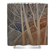 Trees In The Dead Of Winter Shower Curtain