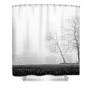 Trees In The Fog 2 Of 4 - Lombardy / Italy Shower Curtain