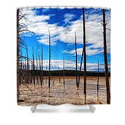 Trees In The Midway Geyser Basin Shower Curtain