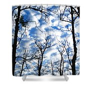Trees In The Sky Shower Curtain