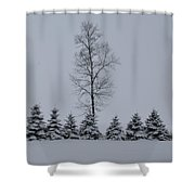 Trees In The Snow Shower Curtain