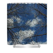 Trees In The Spring With Clouds Shower Curtain