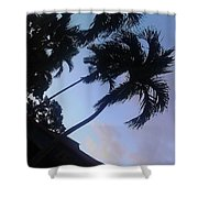 Trees In The Tropics Shower Curtain