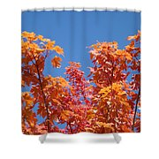 Trees Landscape Art Print Fall Tree Leaves Baslee Troutman Shower Curtain
