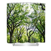 Trees Of Central Park, Nyc Shower Curtain