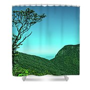 Trees Of Life Shower Curtain