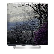 Trees Of Spring Shower Curtain