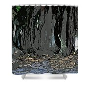 Trees Of The Banyan Shower Curtain