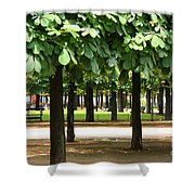 Trees Of Tuilieres Shower Curtain