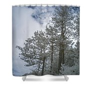 Trees On A Hillside Shower Curtain