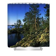 Trees On An Island In A Lake, Lake Shower Curtain