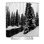 Trees On The River Shower Curtain
