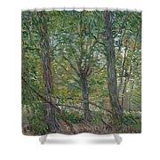 Trees Paris, July 1887 Vincent Van Gogh 1853  1890 Shower Curtain