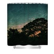 Trees - San Salvador Iv Shower Curtain