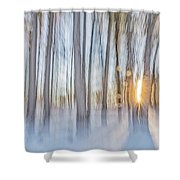 Trees, Snow And Golden Light Abstract Shower Curtain