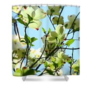 Trees White Dogwood Flowers 9 Blue Sky Landscape Art Prints Shower Curtain