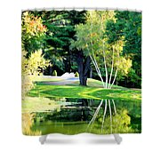 Trees With Mirror Lake 2 Shower Curtain