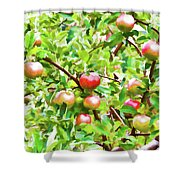 Trees With Red Apples In An Orchard Shower Curtain