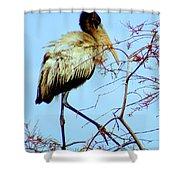 Treetop Stork Shower Curtain