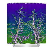 Treetops 3 Shower Curtain