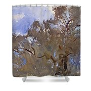 Treetops Against Sky Shower Curtain