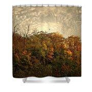 Treetops Shower Curtain