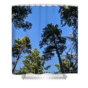 Treetops Shower Curtain
